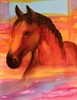 Paintings and drawings by California artist Barbara Cornelius. Subjects include equine paintings, paintings of people, abstracts and still-life.