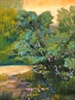 Pastel Paintings by Buffalo New York artist Fred Fielding