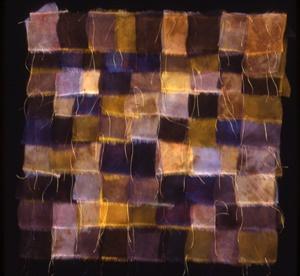 Silk Organza Series