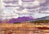 The Purple Hill