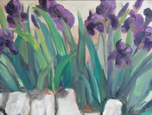 Iris En Provence