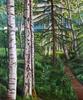 Birches in the Botanical Garden— Anchorage