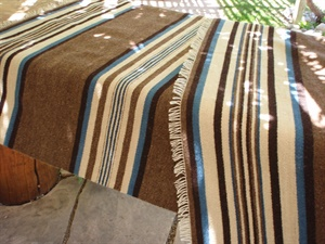 Rio Grande Blanket SABP 3 (detail view)