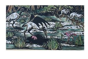 Ichetucknee Birds