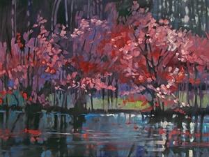 230-16 River Redbuds #230
