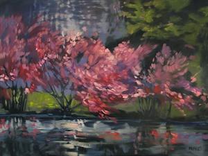 24-17 River Redbuds 24