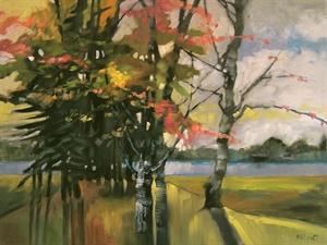 31-17 Lake Trees