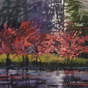161-17 River Redbuds 161