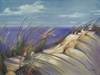 65-18 Dunes #9