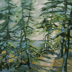 79-18 Firs and Spruces