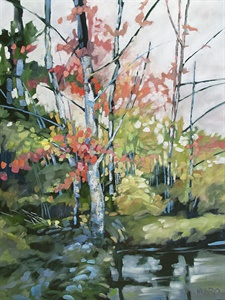 72-19  River Redbud 72