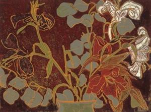 eucalyptus, 1995