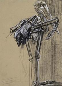 stork skeleton,1996