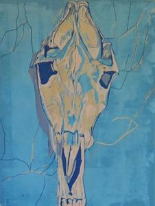 donkey skull