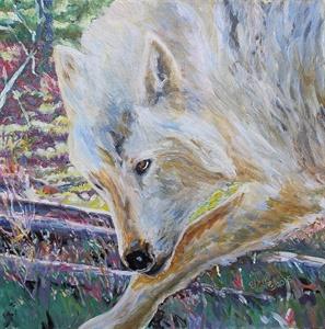 Wolf Portrait I