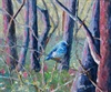 Bluebird In The Burn