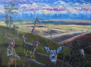 Deer Drama