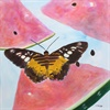Butterfly with Watermelon